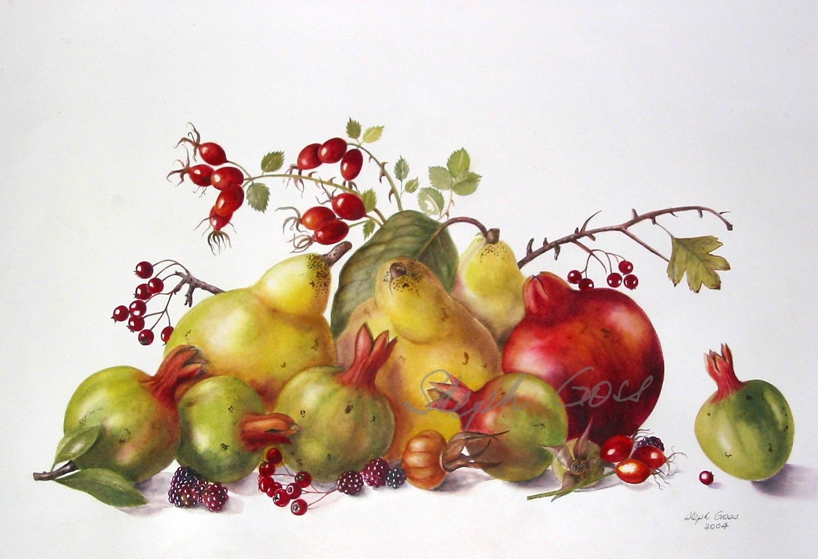 12. Fruits
