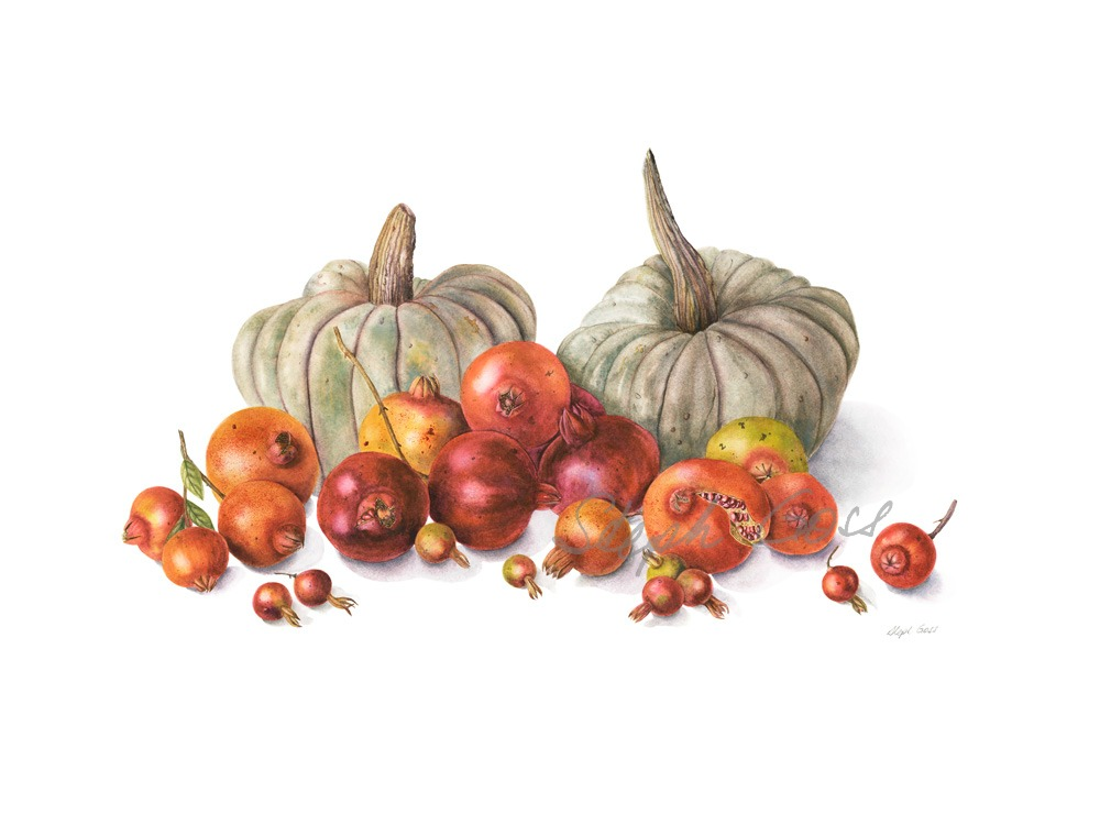 21. Pumpkins and Pomegranates