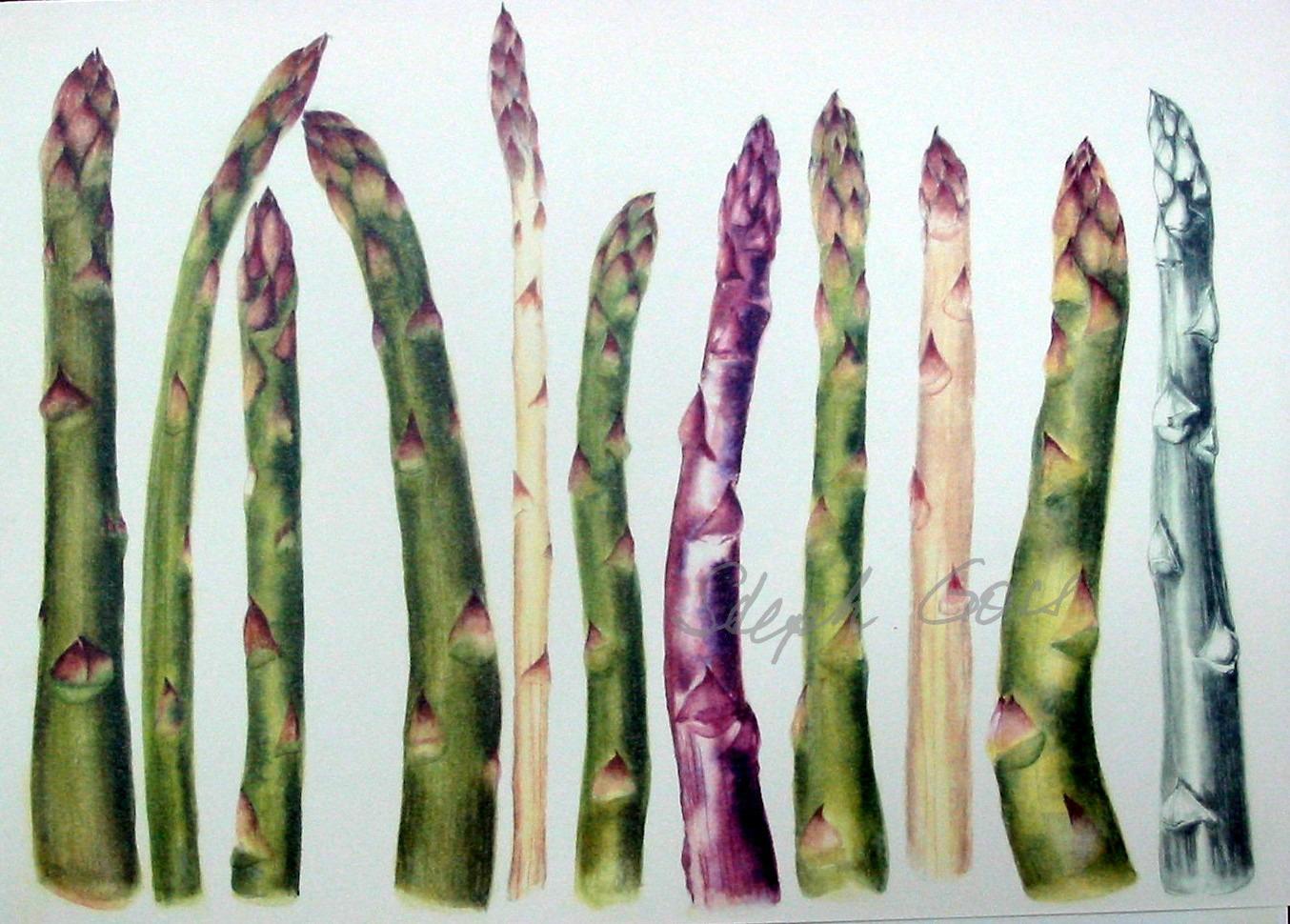 8. Asparagus
